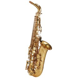 Photo1: Wood Stone/Alto Saxophone/New Vintage/GL