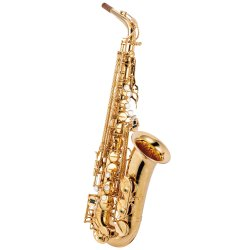 Photo1: Wood Stone/Alto Saxophone/New Vintage/GP
