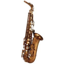 Photo1: Wood Stone/Alto Saxophone/New Vintage/VL/WOF